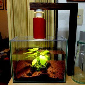 水草水槽と小エビ用の照明