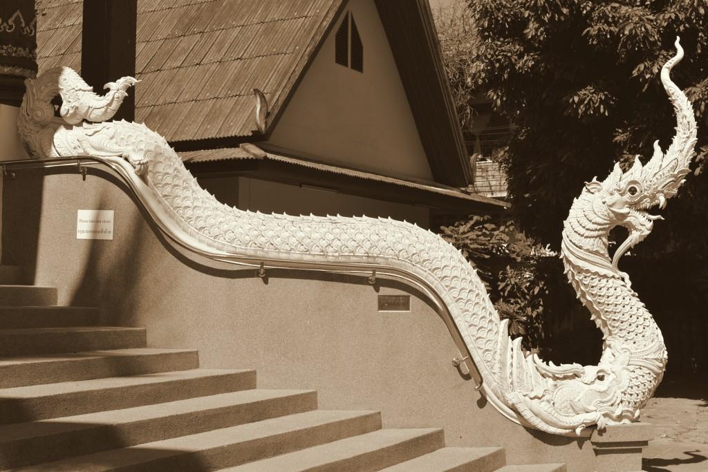 チェンマイ蛇