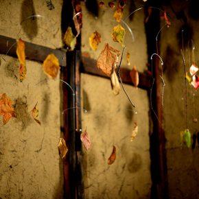 モビール作家の狩野智美さんの作品を「forest × humanbeing ( 森 × 人 )展覧会」にて