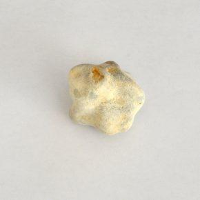 グアム/珊瑚石