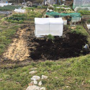 バーク堆肥入れ、定期チェック